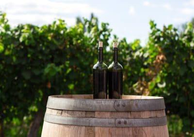 Séminaire gourmand Bourgogne