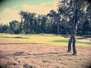 Golf Morfontaine 2