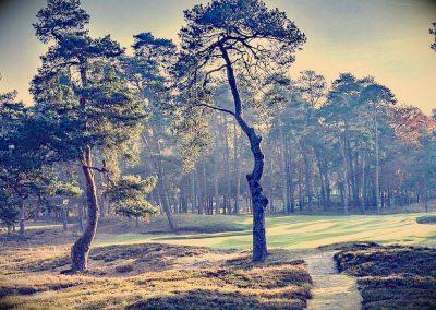 Golf Morfontaine 3